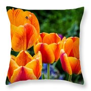 Attractive Throw Pillow