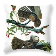 Audubon Chuck-will's Widow Throw Pillow
