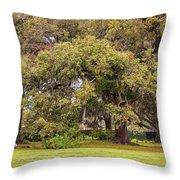 Audubon Park Throw Pillow