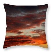 Audubon Sunset Light Throw Pillow