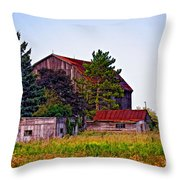 August Afternoon Throw Pillow