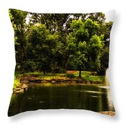 August By The Fountain Throw Pillow