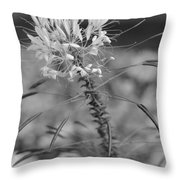 August Garden Throw Pillow