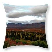 August In Alaska Throw Pillow