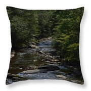 August On Gandy Throw Pillow