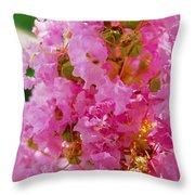 Augusta Beauty Throw Pillow