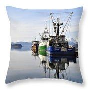 Auke Bay Reflection Throw Pillow