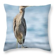 Aukuu Throw Pillow