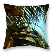 Auku'u The Black Crowned Night Heron Throw Pillow
