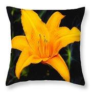 Aurelian Lily Throw Pillow
