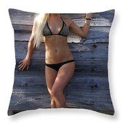 Auriel Old Barn 1 Throw Pillow