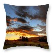 Aurora Equus Throw Pillow