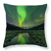 Aurora Valley Throw Pillow