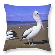 Australian Pelican On Beach Throw Pillow