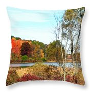 Autmn Pond Closer Look Throw Pillow