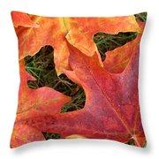 Autum Leaves Throw Pillow