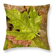 autumm is coming 3 - A carpet of autumn color leaves Throw Pillow
