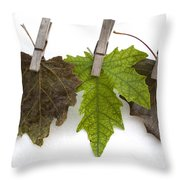 autumm is hanged out - Autumn color leaves Throw Pillow