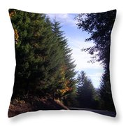 Autumn 12 Throw Pillow