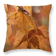 Autumn Acer Throw Pillow