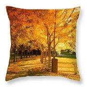 Autumn Alley Throw Pillow