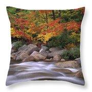Autumn Along Swift River  Throw Pillow