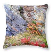 Autumn And Rocks Throw Pillow