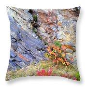 Autumn And Rocks Vertical Throw Pillow