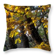 Autumn Throw Pillow by Anonymous