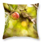 Autumn Apple Throw Pillow