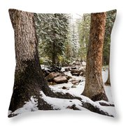 Autumn At Gore Creek 5 - Vail Colorado Throw Pillow by Brian Harig