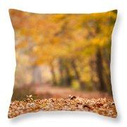 Autumn At Great Falls Throw Pillow
