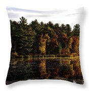Autumn At It's Finest 2 Throw Pillow