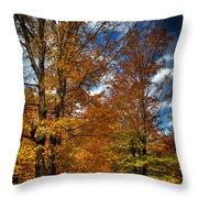 Autumn At Mc Cauley Mountain Throw Pillow