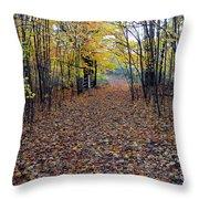 Autumn At Mono Cliffs Throw Pillow