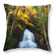 Autumn At Moss Glenn Falls Throw Pillow