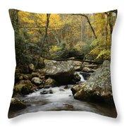 Autumn At Stony Creek Throw Pillow