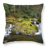 Autumn At The Falls Throw Pillow