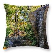 Autumn At The Waterfall Throw Pillow