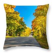 Autumn Back Road Throw Pillow
