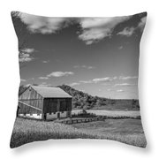 Autumn Barn Monochrome Throw Pillow