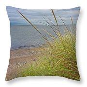 Autumn Beach Grasses Throw Pillow