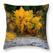 Autumn Beauty In Boise County Throw Pillow