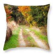 Autumn Beauty On Rural Dirt Road Throw Pillow