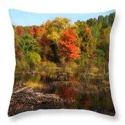 Autumn Beaver Pond Reflections Throw Pillow