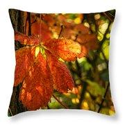 Autumn Begins 2 Throw Pillow