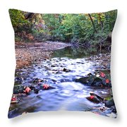 Autumn Begins Throw Pillow by Frozen in Time Fine Art Photography