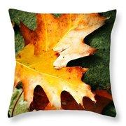 Autumn Blaze Throw Pillow by JAMART Photography