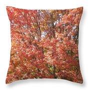 Autumn Blaze Throw Pillow by Kevin Croitz