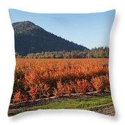 Autumn Blueberry Panorama Throw Pillow